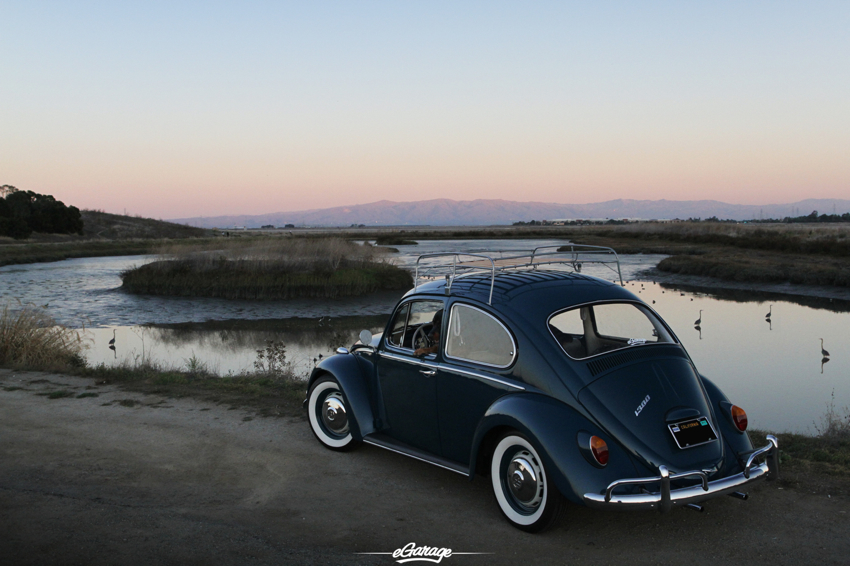 1966 VW Rear 3 4 Beetle Juice   1966 Volkswagen Beetle
