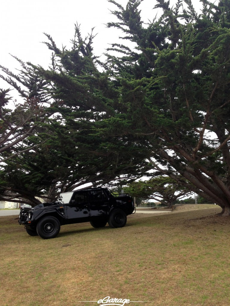 LM002 at the Presidio