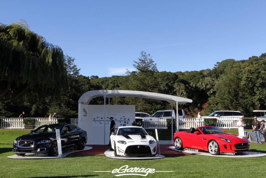 Jaguar at The Quail 2013